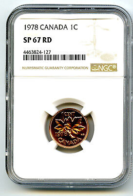 1978 Canada Cent Ngc Sp67 Rd Specimen Copper Coin Super Rare!! Census Only 2