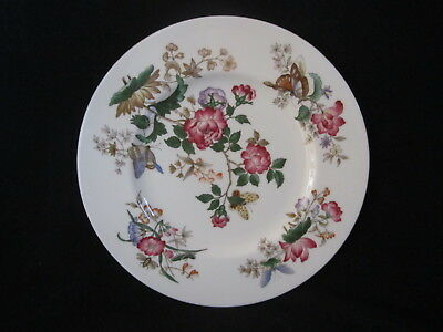 Wedgwood- CHARNWOOD WD3984 - Dinner Plate