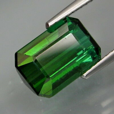 3.13Ct.Awesome Natural Top Bluish Green Tourmaline Mozambique Perfect Shape