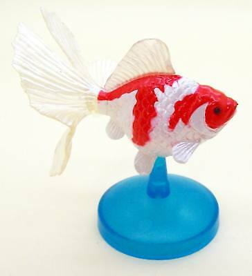 Goldfish heritage Figure Collection Red & White Tosakin Goldfish US seller New