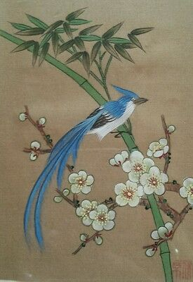 A pair of Stunning Chinese paintings of Blue Magpies on silk. Signed