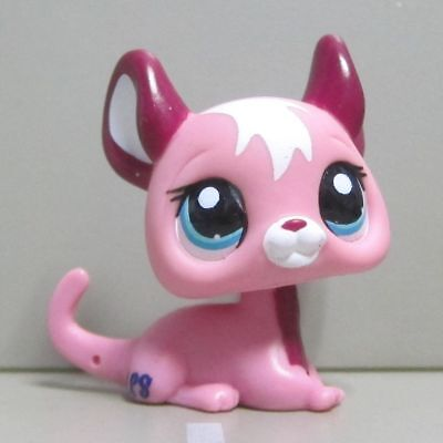 Littlest Pet Shop Collection LPS Loose Figure Pulm Pink Chinchilla Mouse