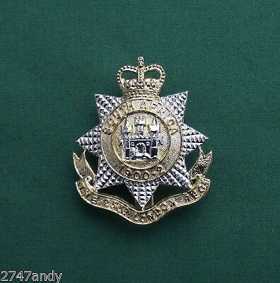 Anodised 23rd Bn The London Regiment -  100% Genuine British Army Military Badge
