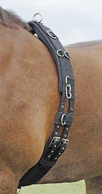 Busse Lunging Belt Pro - Soft 11 Rings WB +P for Lunging Longe Double Longe