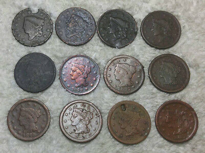 (12 different) Cull Large Cents - 1831-1855 .$99 start