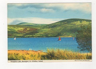 Poulaphuca Lake Blessington Wicklow Ireland Postcard 910a