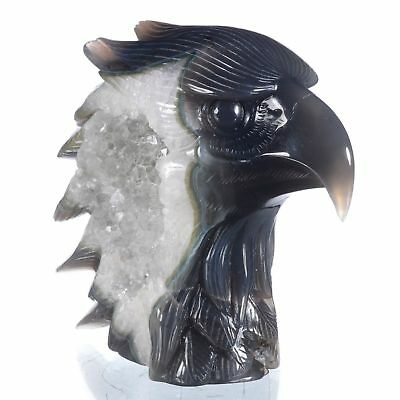 """6.02""""Natural Geode Agate Eagle Head Carving ,Collectibles#AU28"""