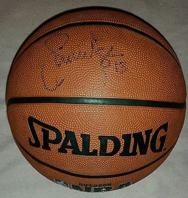 Steve Nash Autograph Nba Legend Hand Signed Basketball - See Exact Proof/coa