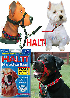 Dog Head Collar Halti Stops Pulling Kindly For Pet, 5 Sizes, Instant Control