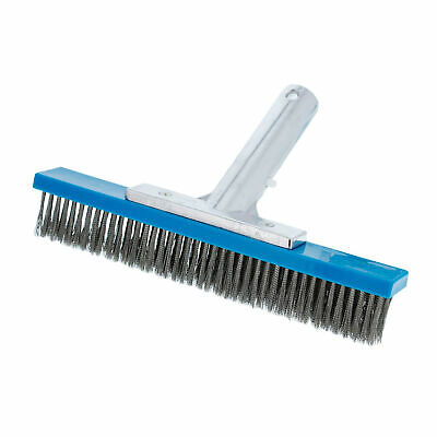 "Professional 10"" Stainless Steel Swimming Pool Algae Brush"