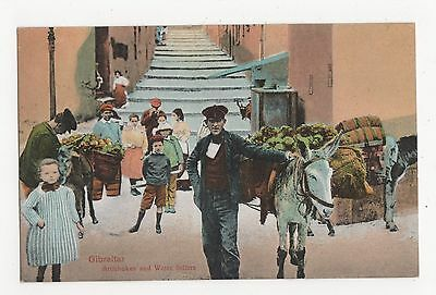 Gibraltar, Artichokes and Water Sellers Postcard, A795