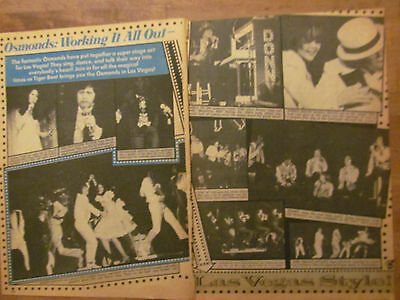 The Osmonds, Donny Osmond, Brothers, Two Page Vintage Clipping