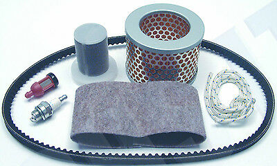Service Kit Fits STIHL TS350 Air Filter, Plug Belt