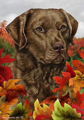 Garden Indoor/Outdoor Fall Flag - Chesapeake Bay Retriever 130701