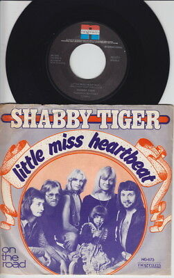 SHABBY TIGER * 1975 Heavy GLAM ART ROCK * Dutch 45 * Listen!