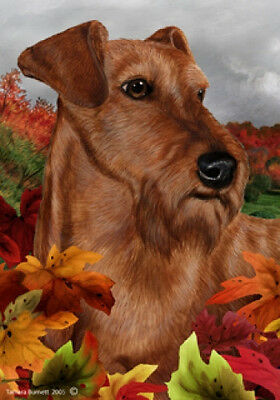 Large Indoor/Outdoor Fall Flag - Irish Terrier 13220