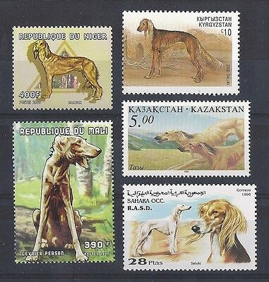 Dog Art Postage Stamp Collection 3 SALUKI Full Body Studies 5 Different MNH