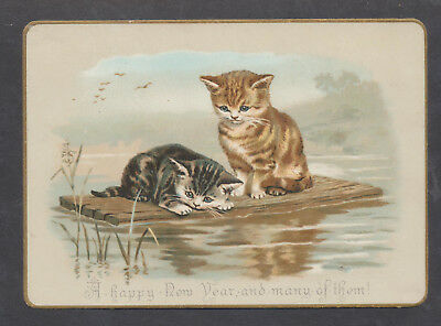 C8520 Good Victorian New Year Card: Cats on Raft