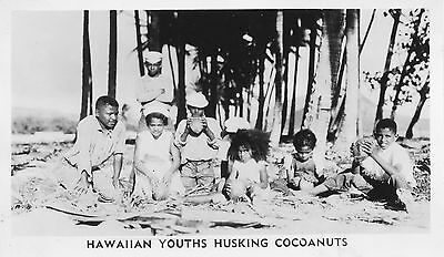 1944 WWII, Youths Husking Coconuts Hawaii Photo