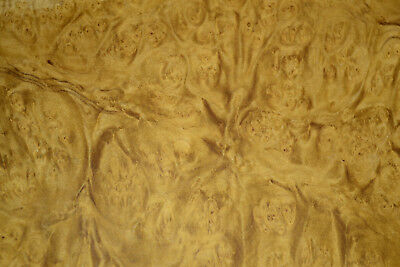 Myrtle Burl Raw Wood Veneer Sheet  8 x 18.5 inches 1/42nd               r6602-19