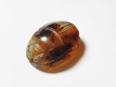 Zurqieh -Af602-  Ancient Egypt, New Kingdom. Huge Agate Scarab 1400 B.c