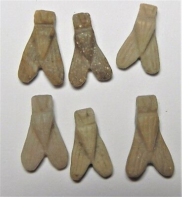 Zurqieh - Af1685- Ancient Egypt , Wonderful Group Of Stone Fly Amulets. 1400
