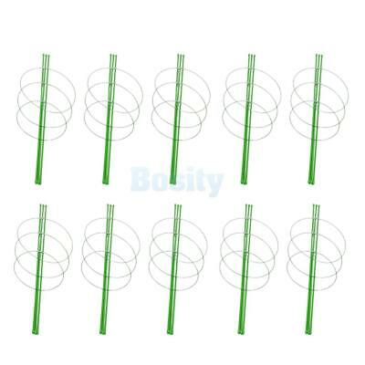 10 Sets Plant Support Climbing Vines Trellis Supporter Climbing Holder 60cm