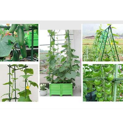 30pcs Flower Plant Support Climbing Vine Stakes Garden Supply 8mm+11mm+16mm