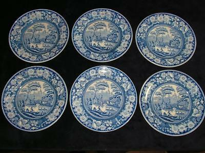 "6 x MID 19th CENTURY 10.5"" BLUE & WHITE WILD ROSE DINNER PLATES JOHN MEIR & SON"