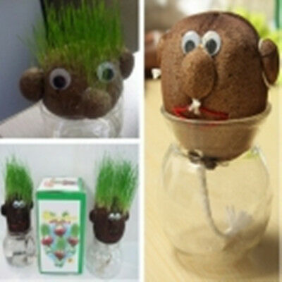 Mini DIY Magic Grass Plant Pot Grass Head Doll Kids Education Toy Christmas Gift