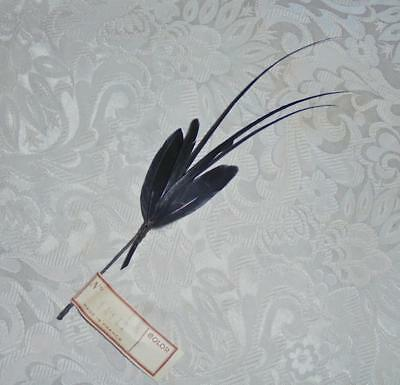 Beautiful Victorian Edwardian French Feather Hat/millinery Decoration, Paris