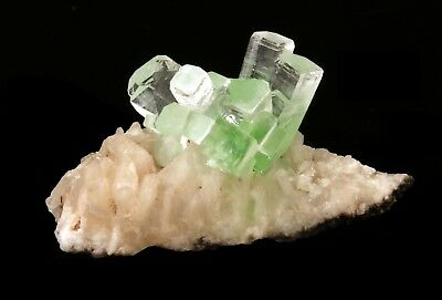 Apophyllite Froasted Green Crystal With Stilbite # 1910