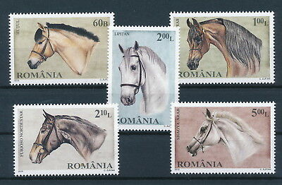[H0485] Romania 2010 Horses good Very Fine MNH set of stamps