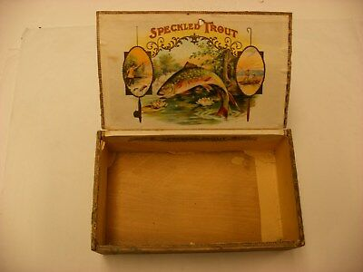 "Vintage SPECKLED TROUT Wood Cigar Box 8 12"" x 5"" Fisherman Fishing Art"