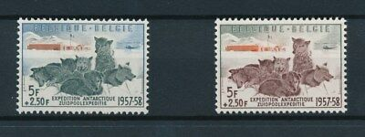 [91433] Belgium 1957 Dogs 2 good stamps Very Fine MNH