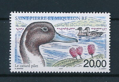 [93704] SPM 1999 Ducks good Airmail stamp Very Fine MNH