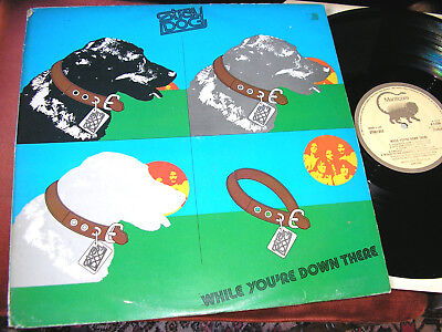 STRAY DOG-    While You're Down There,   RARE 1974 UK LP / inner.....DECENT COPY