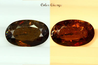 2.115 Ct  Earth Mined Unique Dazzling 100% Natural Dancing' Color Change Axinite