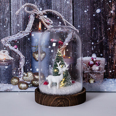 Light up christmas dome reindeer LED cloche decoration xmas tree scene gift home