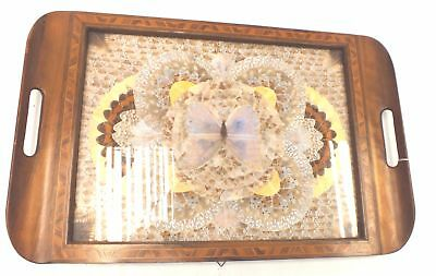 UNBRANDED Wooden BUTTERFLY DESIGN CARRYING TRAY Incl Handles - W31