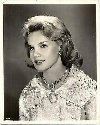 Stunning Young Carroll Baker Orig Vintage Early 60's Hollywood Portrait Still