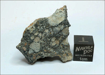 Amazing looking Lunar Meteorite NWA 11273 - 12.7 grams - Own a Piece of the Moon