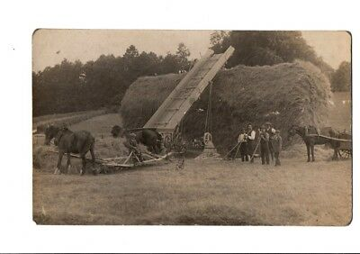 Old Postcard Unknown Haymaking Harvesting Horses Equipment