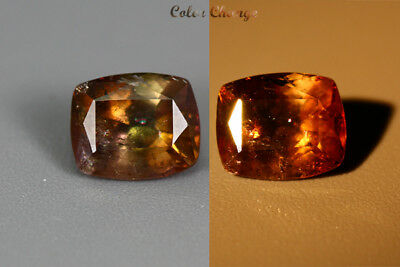 1.410 Ct  Earth Mined Unique Dazzling 100% Natural Dancing' Color Change Axinite
