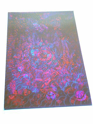 ETW PSYCHEDELIC 2 SIDED Poster EVENING RAGA OVERPRINTED GATES OF EDEN
