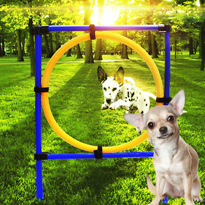 Pet Dog Jumps Training Agility Tunnel Outdoor Flyball Equipment Show  New.
