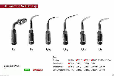 6x Dental Ultrasonic Scaler Perio Endo Scaling Tips Fit EMS WOODPECKER H1HZX