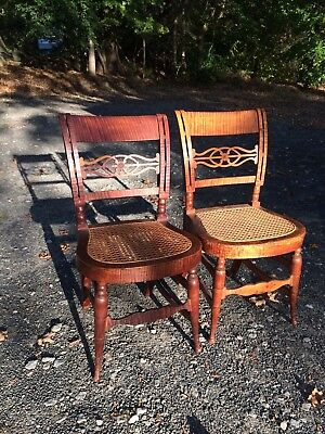 Pair of 19th Century American Tiger Maple Federal Carved Side Chairs Cane Seats