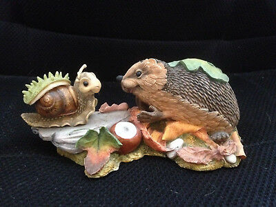Country Artists Hedgies 'So You Want To Be A Hedgie' boxed.Fairy garden ornament