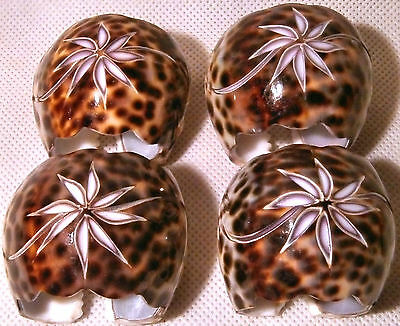 Set of Four Tiger Cowrie Shell Napkin Rings with Engraved Floral Design